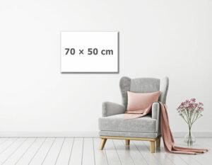 Fotoobraz 50 x 70 cm